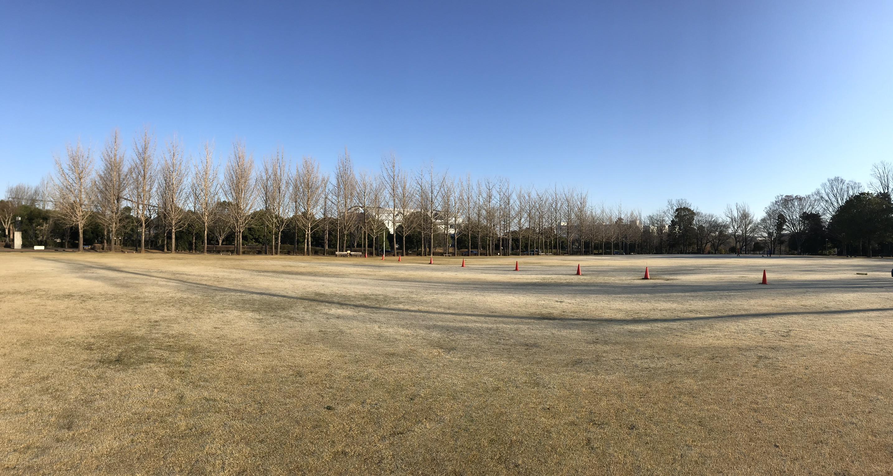 筑波科学万博記念公園